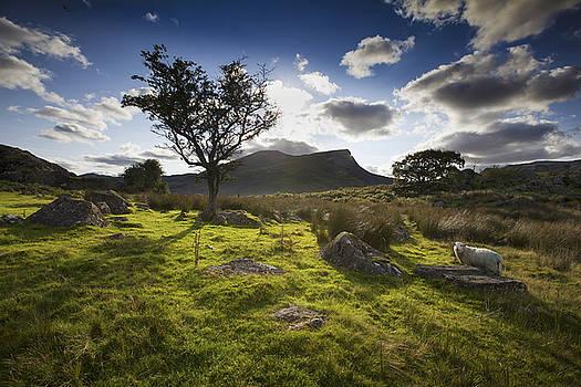 Rhyd Ddu, Snowdonia, Wales by Richard Wiggins