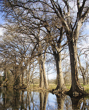 Rio Frio in winter by Brian Kinney