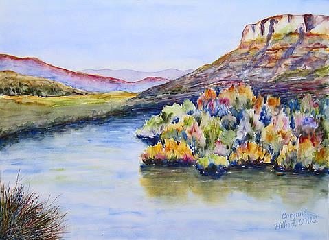 River Canyon by Corynne Hilbert