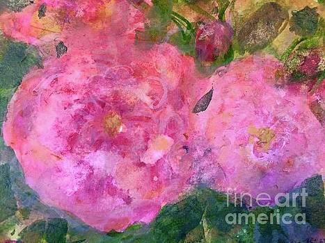 Rose de L Arborete by Aase Birkhaug