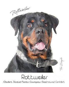 Rottweiler Poster by Tim Wemple