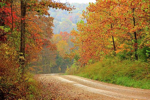 Rural Arkansas by Carolyn Wright