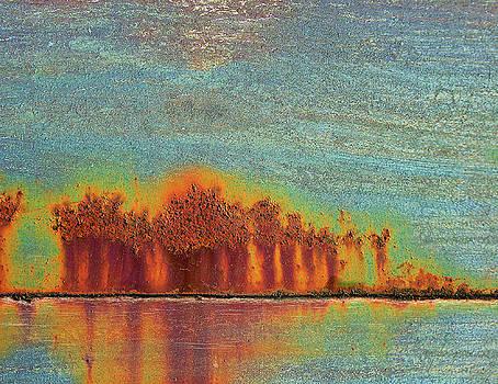 Rust landscape by Paul Parsons