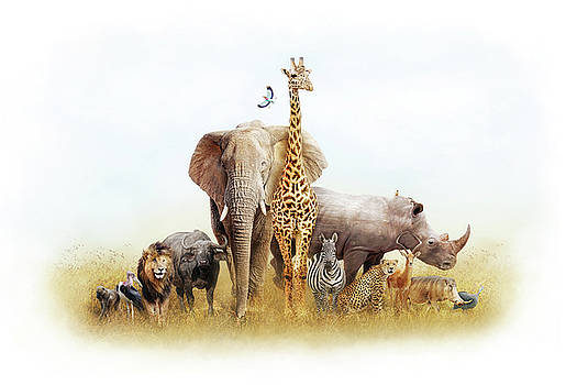 Safari Animals in Africa Composite by Susan Schmitz