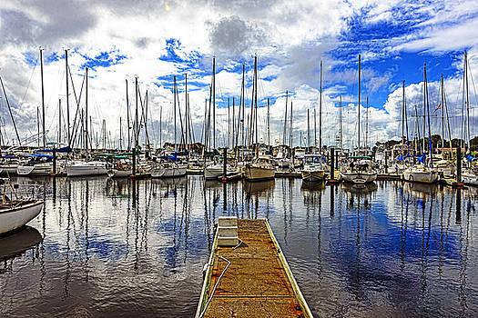 Safe Harbor by Anthony Baatz