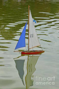 Sail Boat by Andy Thompson