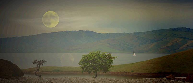 Joyce Dickens - Sailing In The Moonlight