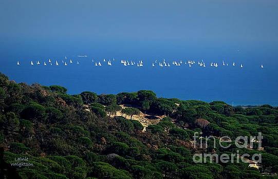 Sailing the Mediterranean by Lainie Wrightson