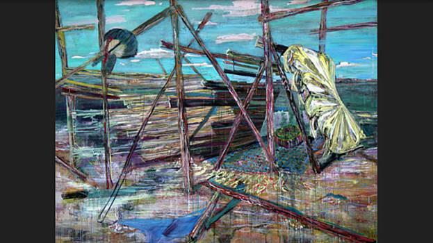 Salton Sink by Christina Shurts