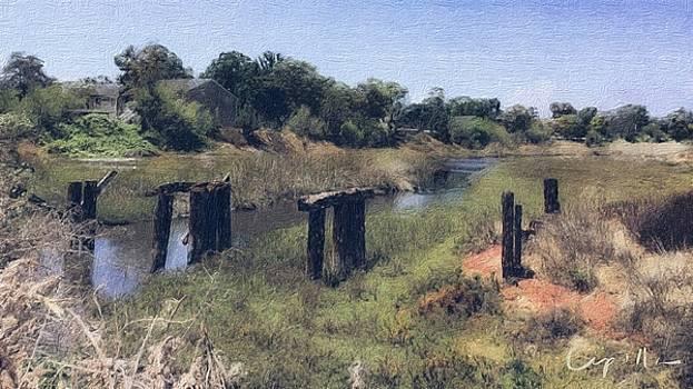 San Diego Famosa Slough by Jan Cipolla