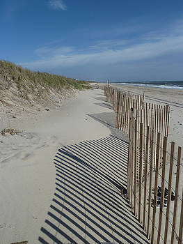 Sand Barrier by Andrea Lucas