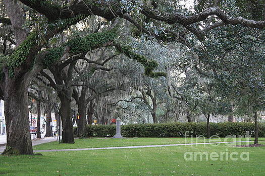 Savannah Sidewalk by Danielle Groenen