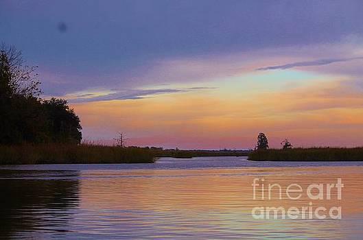 Savannah Sunset by Keri West