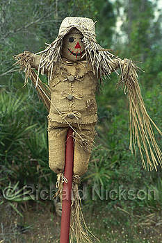 Scarecrow by Richard Nickson