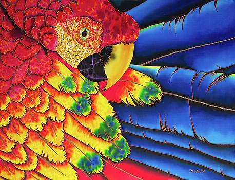 Scarlet Macaw by Daniel Jean-Baptiste