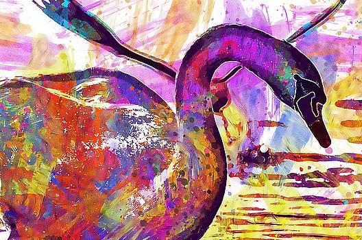 Seagull Swan Water Lake Constance  by PixBreak Art