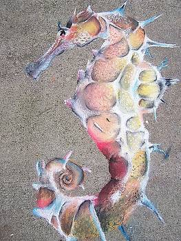 Seahorse by Beka Burns