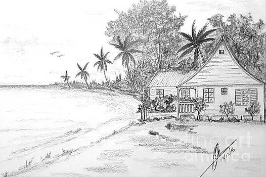 Seaside Cottage  by Collin A Clarke