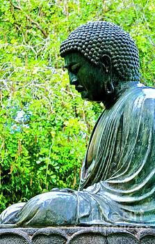 Seated Buddha by Craig Wood
