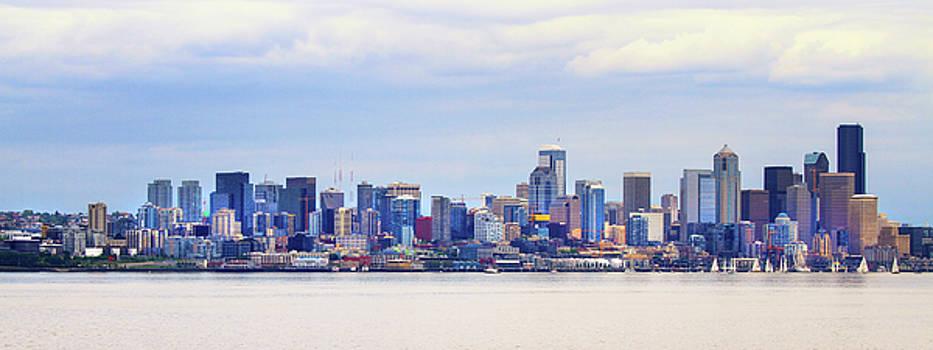 Seattle Skyline by Juli Ellen