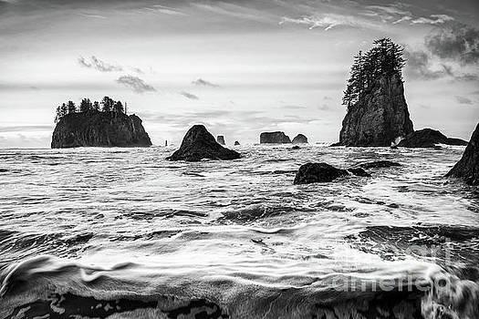 Jamie Pham - Second Beach Waves