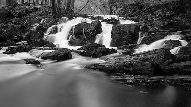 Selkefall, Harz by Andreas Levi