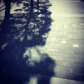 #shadow #光と影 by Bow Sanpo