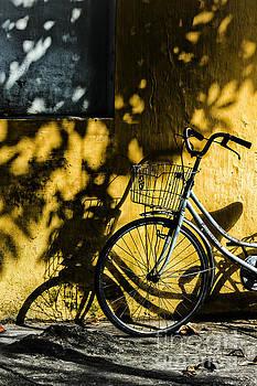 Shadows by Christos Koudellaris