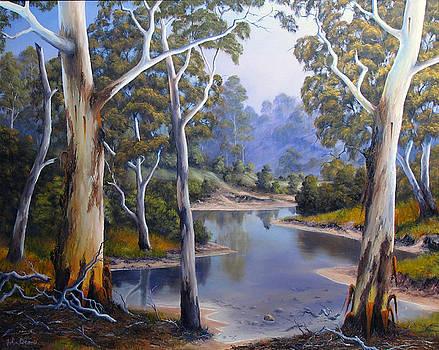 Shallow River by John Cocoris