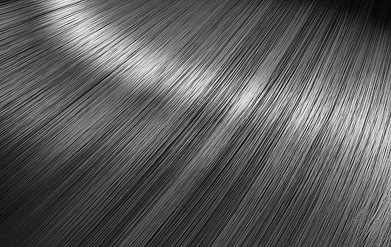 Shiny Silver Hair  by Allan Swart