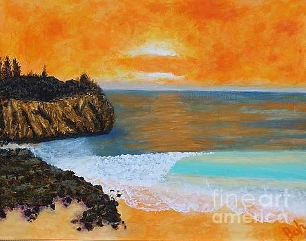Shipwreck's Beach by William Ohanlan