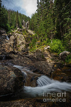 Silver Tip Falls by Carrie Cole