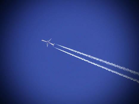Sky High by Jamie Johnson
