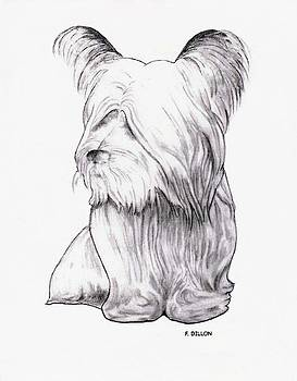 Skye Terrier by Frances  Dillon