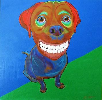 Smiley by Bill Manson