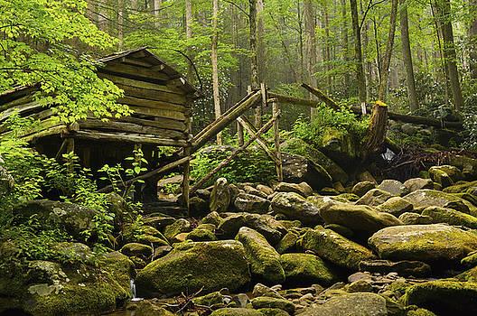 Smokey Mountain National Park  by Kevin Blackburn