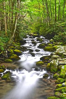 Frozen in Time Fine Art Photography - Smoky Mountain Stream