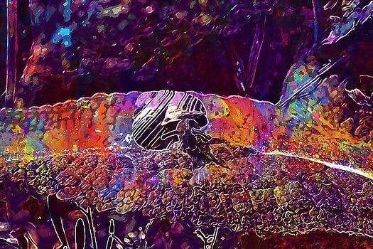 Snail Garden Shell Nature Animal  by PixBreak Art