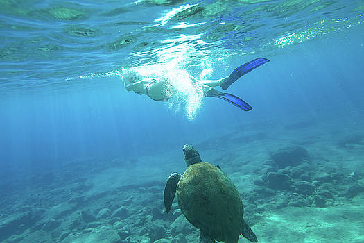 Snorkeler female sea turtle by Benny Marty