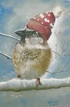 Snow Bird by Ralph Duncan