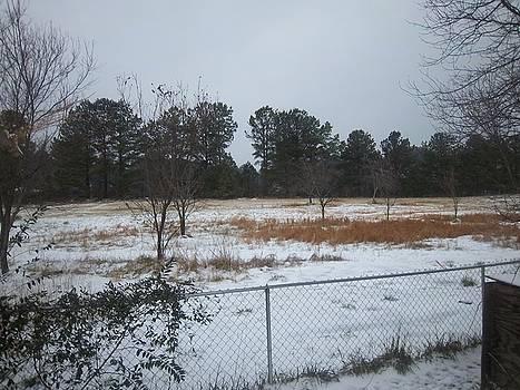 Snowy Day by Scarlett Stephenson