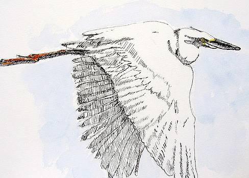Snowy Egret by Barbara Pearston