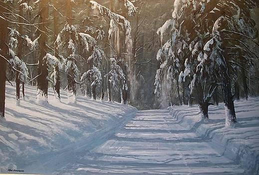 Snowy Road by Ken Ahlering