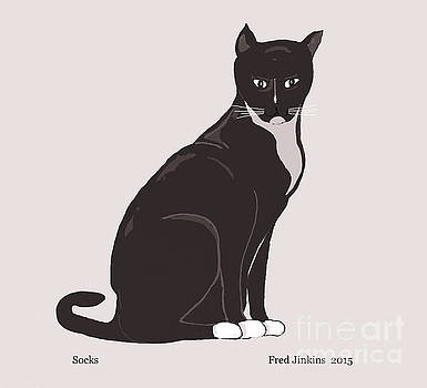 Socks the Cat by Fred Jinkins