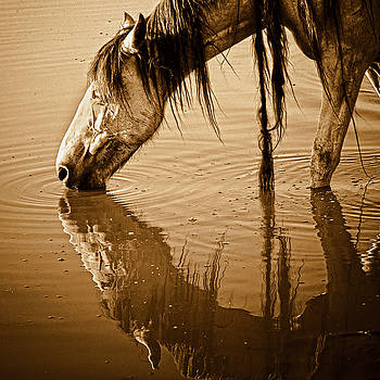 Somewhere West of Laramie by Ron  McGinnis