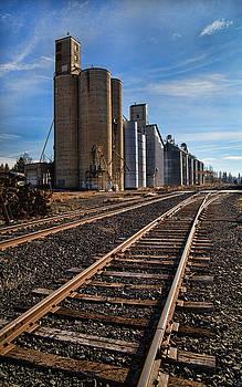 Spangle Grain Elevator by Paul DeRocker