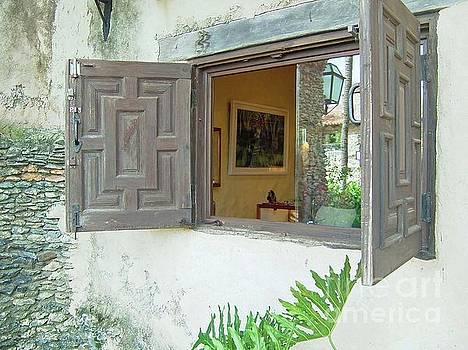Gary Wonning - Spanish Windows