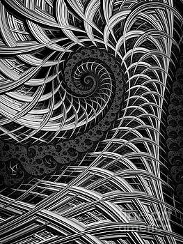 Spiral Cage by John Edwards