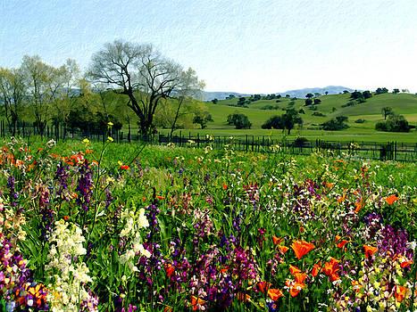 Kurt Van Wagner - Spring Bouquet at Rusack Vineyards