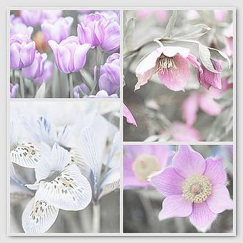 Jenny Rainbow - Spring Flower Collage. Shabby Chic Collection